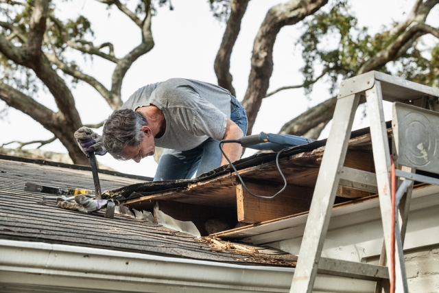 Man Examining And Repairing Roof